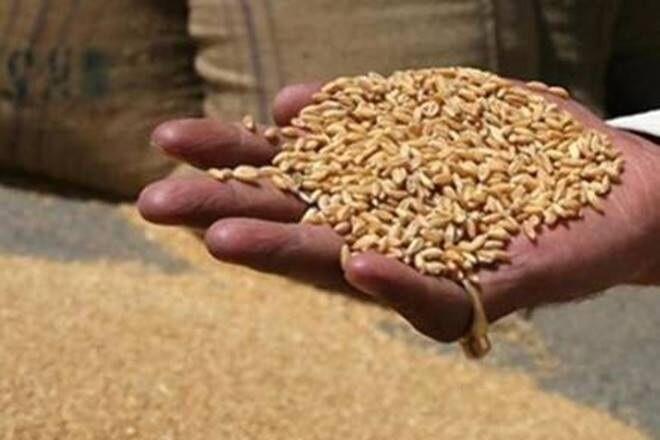 मुजफ्फरनगर में 21अगस्त से फिर वितरित होगा पीएम अन्न योजना में राशन