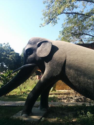 रफी अहमद किदवई पार्क, हाथी पार्क में हो रहा अवैध निर्माण, प्रशासन मौन